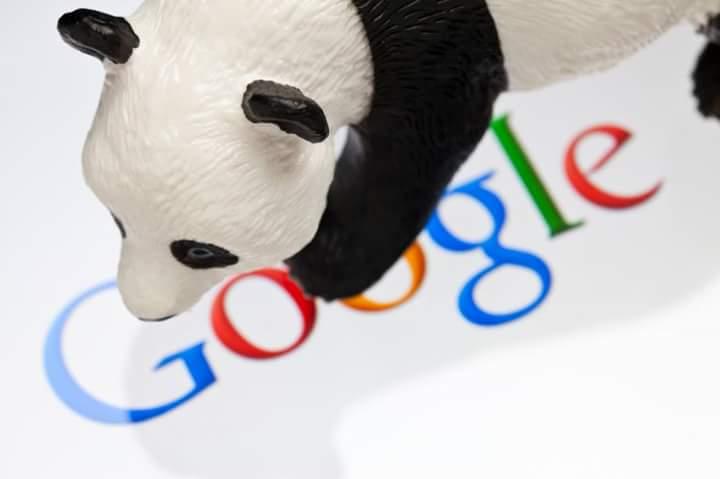 كل ما تريد معرفته عن تحديث جوجل الجديد وما تآثيره على موقعك .. وكيفية الحل